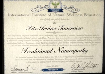 Traditional Naturopathy Diploma